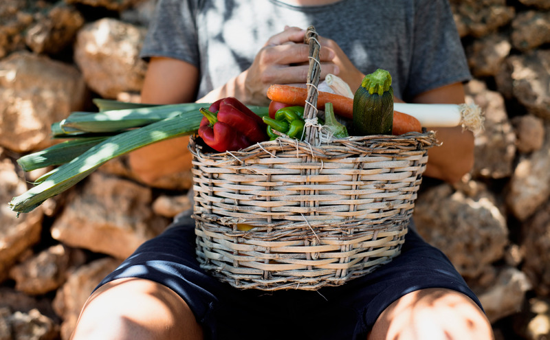 closeup of a young caucasian man with a rustic basket full of vegetables freshly collected in an organic orchard